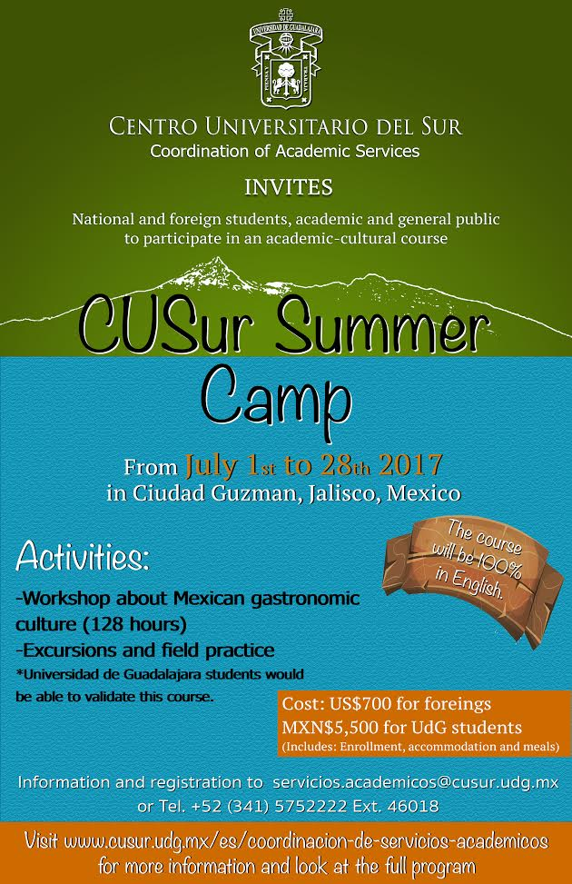 CUSur Summer Camp